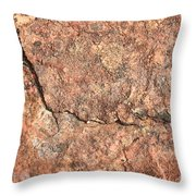 Nature Abstract - Cracked Throw Pillow