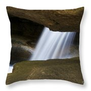 Nature Abstract Art Throw Pillow