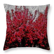 Nature As Art Throw Pillow