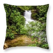 Nature At Her Most Beautiful Throw Pillow