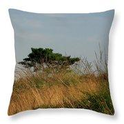 Nature Bonzai In The Evening Sun Throw Pillow