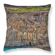 Nature Carvings Throw Pillow