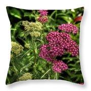 Nature Center Throw Pillow