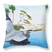 Nature Coast 2 Throw Pillow by Kevin Brant