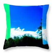 Nature Divided Throw Pillow