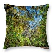 Nature Drive Throw Pillow