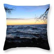 Nature Frame Throw Pillow