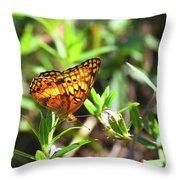 Nature From South Carolina Throw Pillow