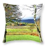 Nature Has Reclaimed The Lake Throw Pillow