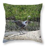 Nature In Florida Throw Pillow