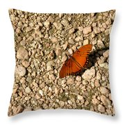 Nature In The Wild - A Splash Of Color On The Rocks Throw Pillow
