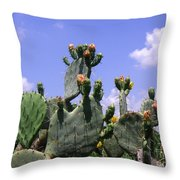 Nature In The Wild - Against A Big Sky Throw Pillow