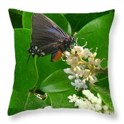 Nature In The Wild - Beautiful In Black Throw Pillow
