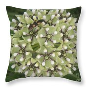 Nature In The Wild - In Its Own World Throw Pillow