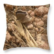 Nature In The Wild - Just Blending In Throw Pillow