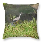 Nature In The Wild - Target Identified Throw Pillow