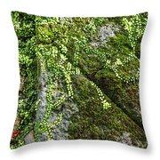 Nature - Living Retention Wall 1 Throw Pillow