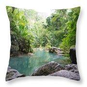 Nature Neto Throw Pillow