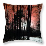 Nature Of Wood Throw Pillow