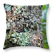 Nature Painted Tree Bark Throw Pillow