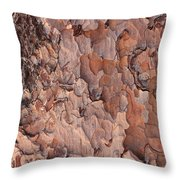 Nature Puzzle Throw Pillow