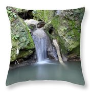 Nature Spring Scene Creek Throw Pillow
