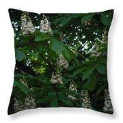 nature Ukraine blooming chestnuts Throw Pillow