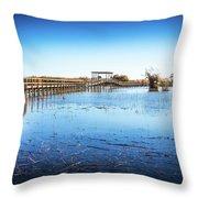 Nature Walk Throw Pillow by Gary Gillette