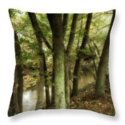 Nature Walk Along The Stream Throw Pillow