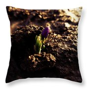 Nature Wins Every Time Throw Pillow