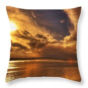 Nature Wonders Throw Pillow