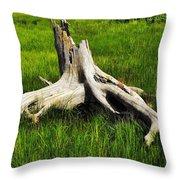 Natures Artwork Throw Pillow