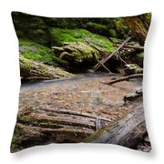 Nature's Artwork Throw Pillow