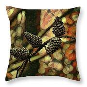 Natures Barometer Throw Pillow