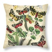 Natures Beauty-no.2 Throw Pillow