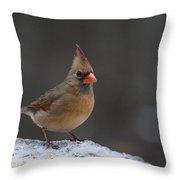 Natures Birds 54 Throw Pillow