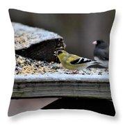 Natures Birds 58 Throw Pillow