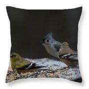 Natures Birds 59 Throw Pillow