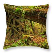 Nature's Bridge Throw Pillow