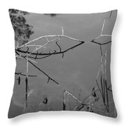 Natures Bridge Throw Pillow