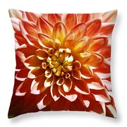 Nature's Brilliance Throw Pillow