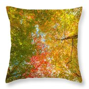 Natures Canopy Of Color Throw Pillow