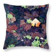 Natures Canvas Throw Pillow