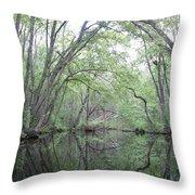 Nature's Chapel Throw Pillow