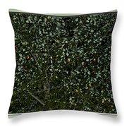 Nature's Christmas Lights Throw Pillow