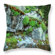 Nature's Collage Throw Pillow