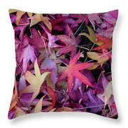 Nature's Confetti Throw Pillow