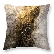 Natures Creativity - Golden Crevasse Throw Pillow