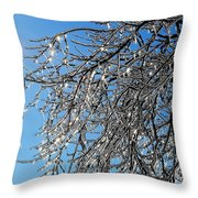 Natures Crystal Throw Pillow