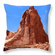 Nature's Curves Throw Pillow